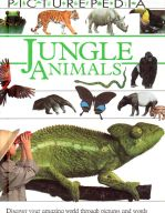 DK Picturepedia Jungle