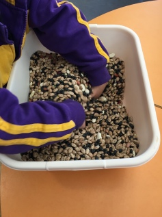 Kryponite Sensory Play